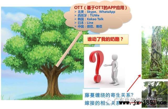 通信网络树形结构示意图