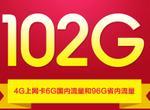 电信 无线上网手机号码卡 102G 包年卡(省内流量全省通用)